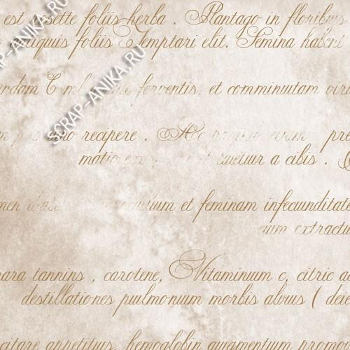 бумага с текстом