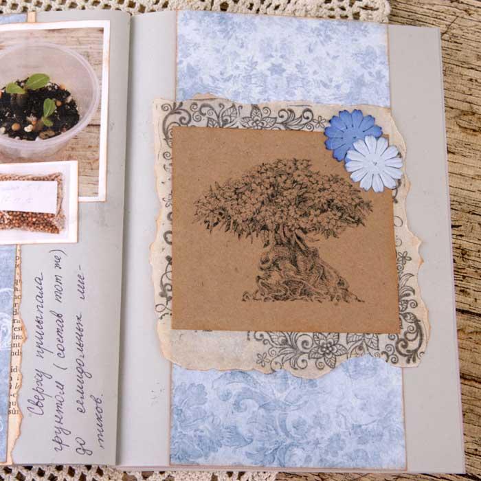 разворот артбука, артбук своими руками, пергамент в скрапбукинге, кальки в скрапбукинге