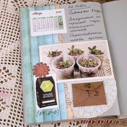 артбук, дневник по адениумам, как выращивать семена, скрапбукинг артбук, материалы для артбука