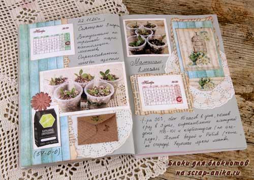 артбук своими руками, дневник по растениям, как вырастить адениум из семян, что такое артбук