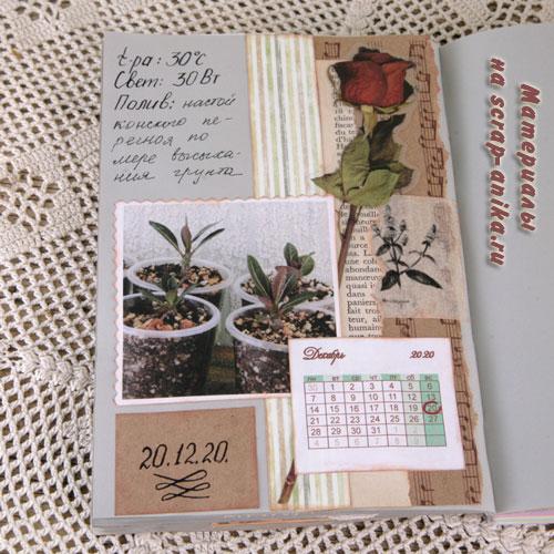 страница в альбом, растительная тема, стиль ботаника, как сделать блокнот, блокнот в ботаническом стиле