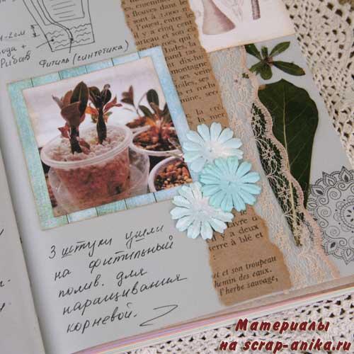 гербарий, гербарий в скрапбукинге, артбук в скрапбукинге, скрапбукинг