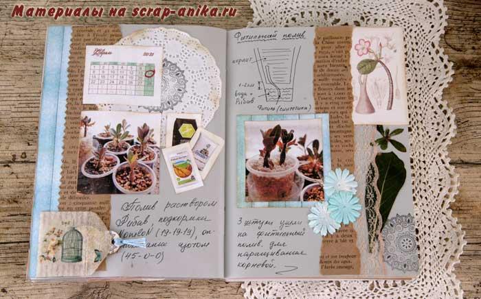 адениум дневник, дневник по адениумам, скрапбукинг мастер класс, как сделать артбук, артбук идеи, скрапматериалы