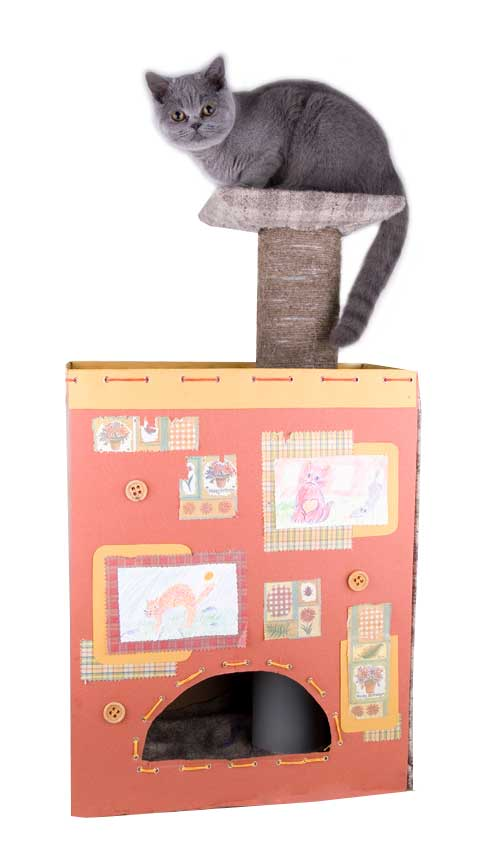 Рукоделия для кошек