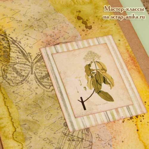 идеи для блокнота, идеи для артбука, артбук в ботаническом стиле, ботанический стиль, скрапбукинг ботаника
