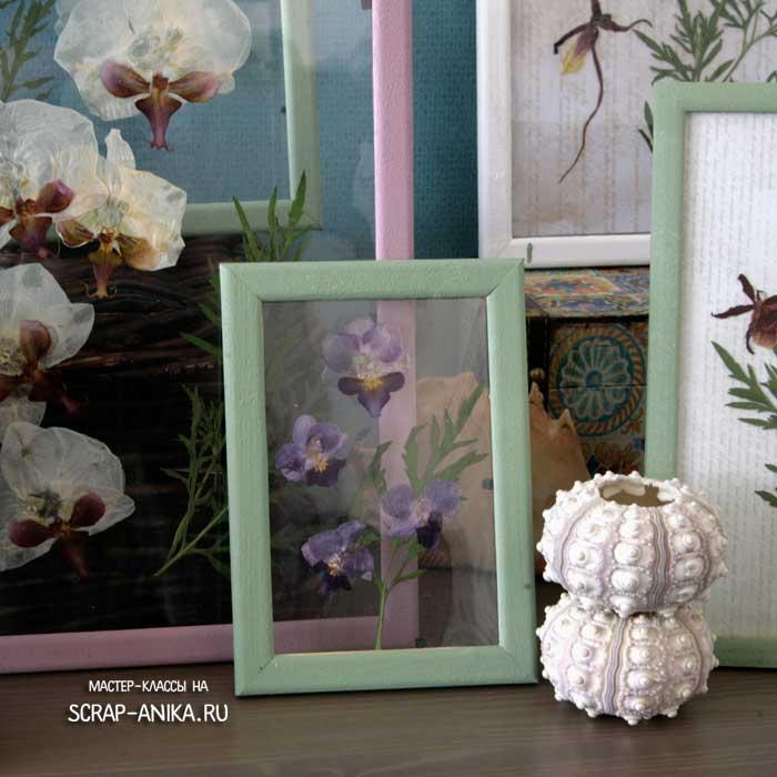 гербарий, эко стиль, интерьер, стиль ботаника