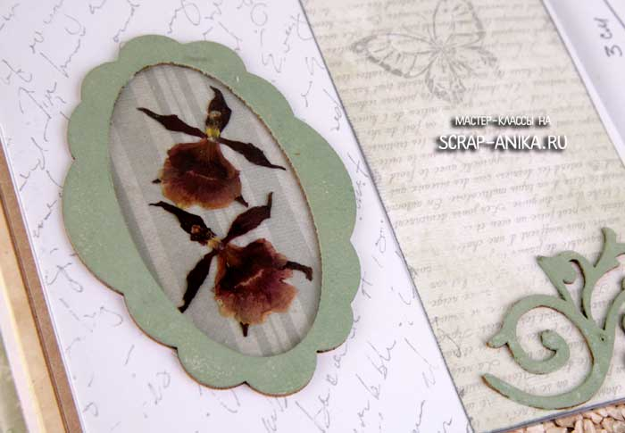 гербарий для скрапбукинга, скрапбукинг детали, скрап аника