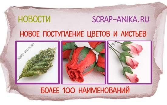 цветы, листья, бутоны для скрап